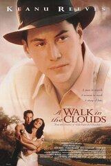 Постер к фильму «Прогулка в облаках»