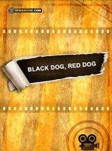 Постер к фильму «Чёрный пёс, рыжий пёс»