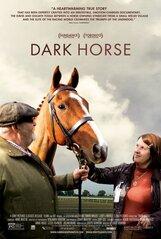 Постер к фильму «Темная лошадка»