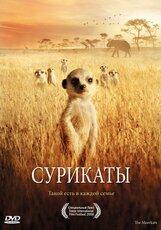 Постер к фильму «Сурикаты»