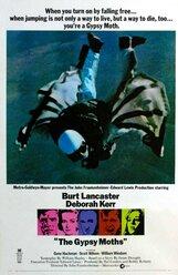Постер к фильму «Шелкопряд»
