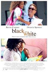 Постер к фильму «Черное и белое»