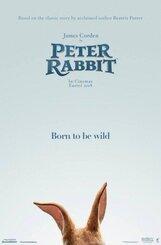 Постер к фильму «Приключения Кролика Питера»