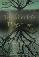 Постер к фильму «Жизнь после жизни»