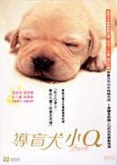 Постер к фильму «Куилл »