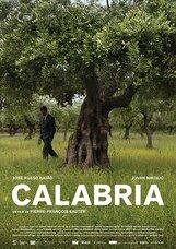 Постер к фильму «Калабрия»