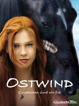 Постер к фильму «Восточный ветер»