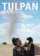 Постер к фильму «Тюльпан»