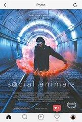 Постер к фильму «Социальные животные»