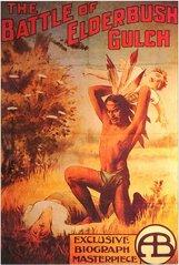Постер к фильму «Битва при Элдербушском ущелье»