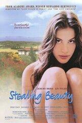 Постер к фильму «Ускользающая красота»