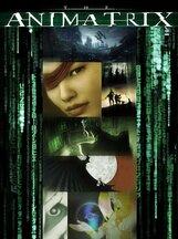 Постер к фильму «Аниматрица: История одного ребенка»