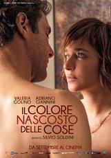 Постер к фильму «Скрытый цвет вещей»
