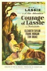 Постер к фильму «Храбрость Лесси»