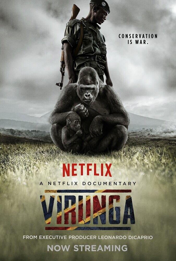 Вирунга