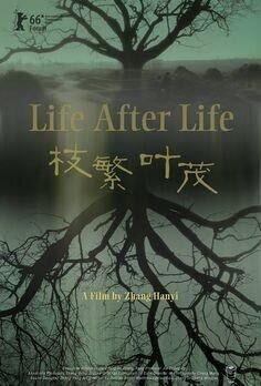 Жизнь после жизни