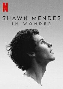 Шон Мендес: In Wonder
