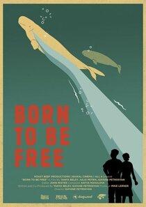Постер к фильму Рожденные свободными