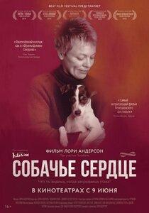 Постер к фильму «Собачье сердце»