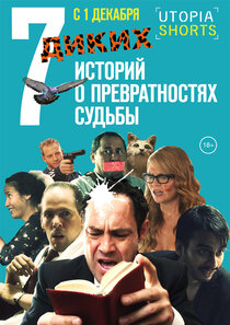 Постер к фильму 7 диких историй о превратностях судьбы