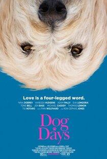 Постер к фильму Dog Days