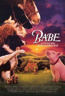 Бэйб, четвероногий малыш