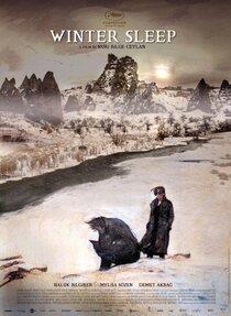 Постер к фильму Зимняя спячка