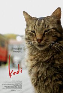 Постер к фильму Город Кошек