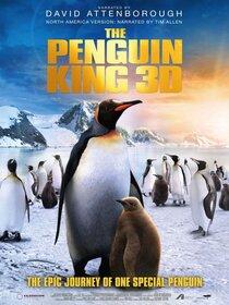 Постер к фильму Король пингвинов 3D