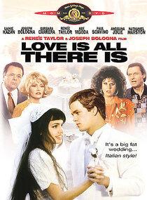 Постер к фильму Итальянские любовники