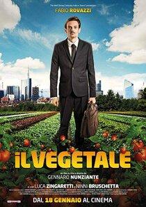 Постер к фильму Овощи