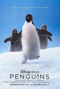 Постер к фильму Пингвины