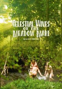 Постер к фильму Небесные жены луговых мари
