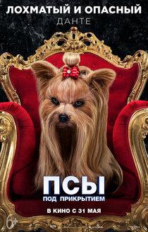 Постер к фильму Псы под прикрытием