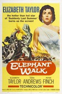 Постер к фильму Слоновья тропа