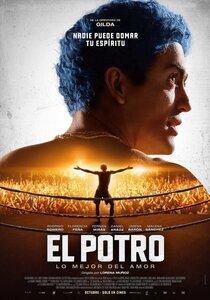 Постер к фильму El Potro, lo mejor del amor