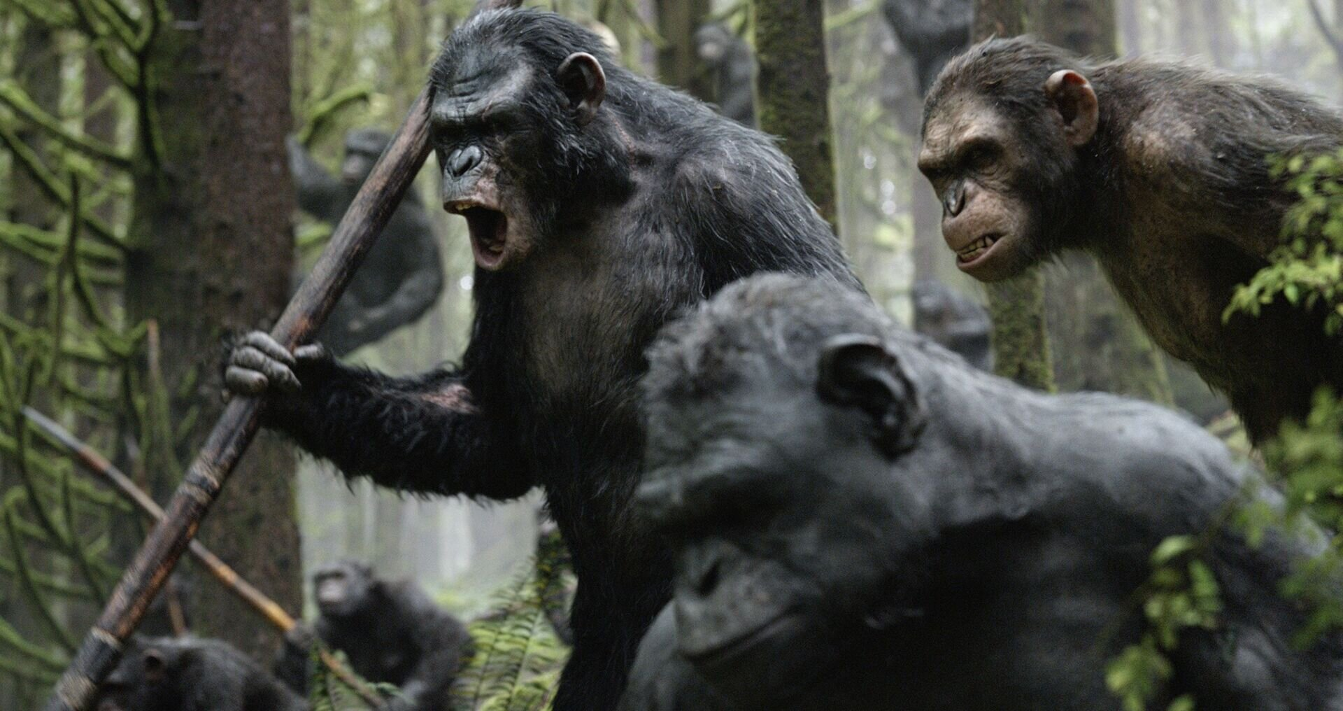 Картинка планета обезьян революция
