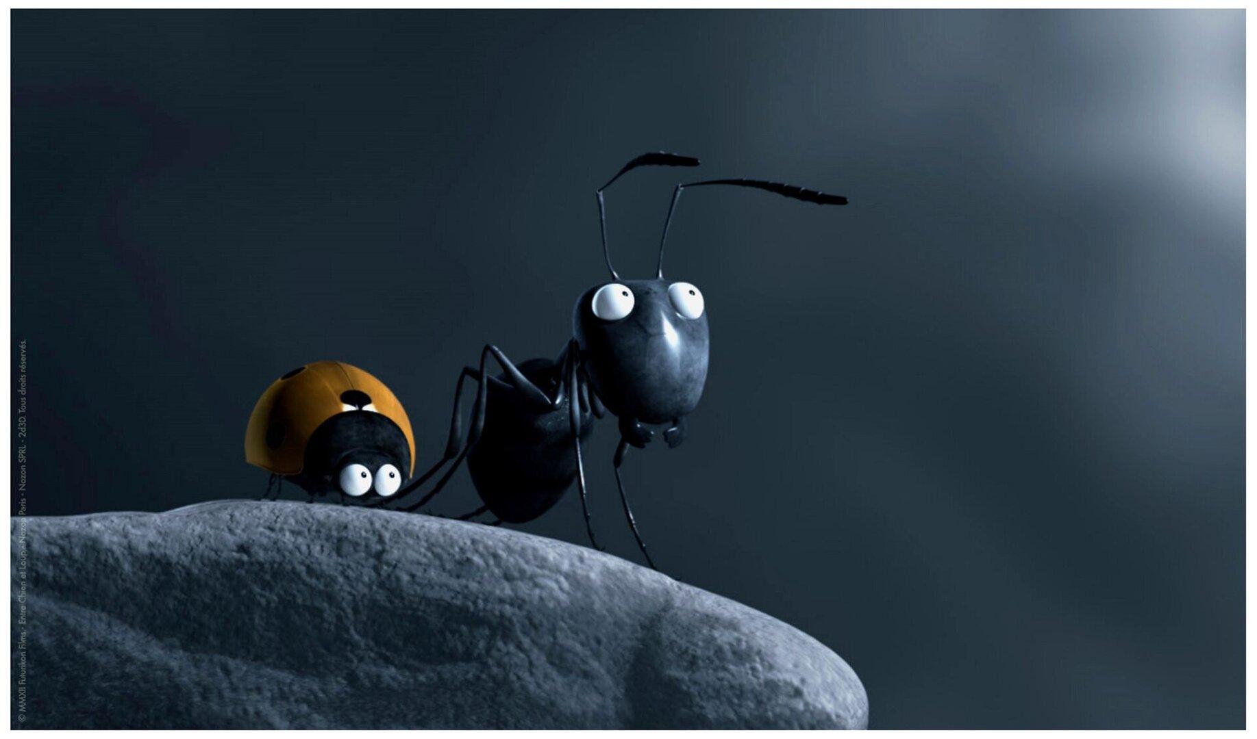 Открытки оптом, муравей смешная картинка