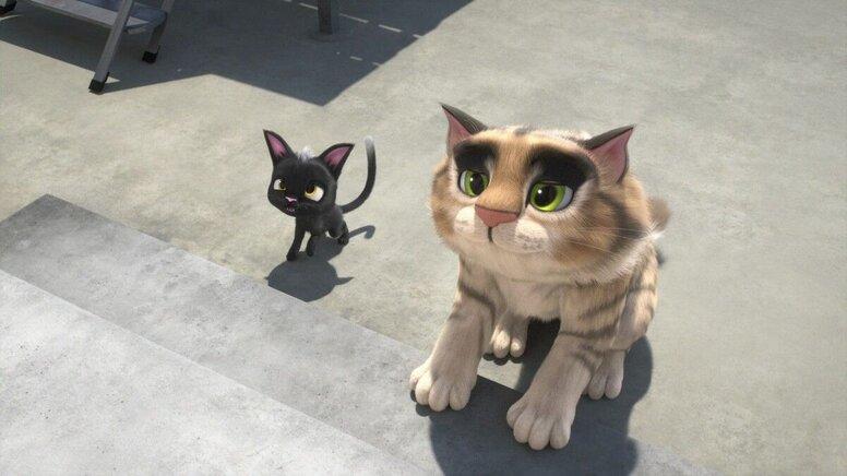 «Жил был кот»: Рецензия Киноафиши