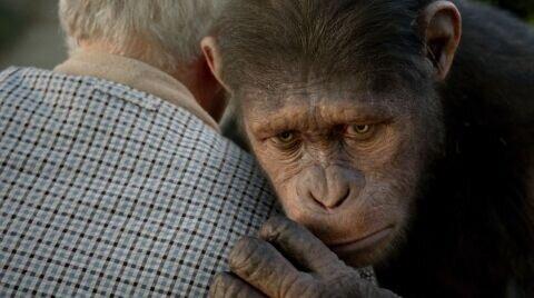 «Восстание планеты обезьян»: Рецензия Киноафиши