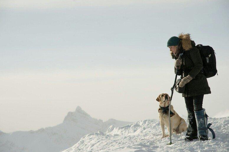 «Между нами горы»: Рецензия Киноафиши