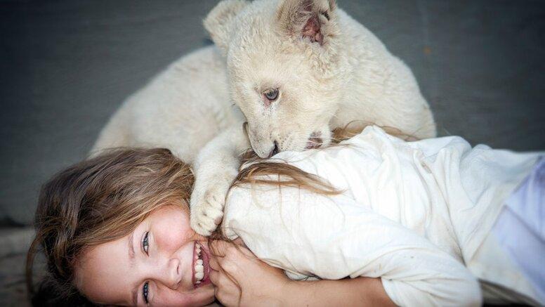«Миа и белый лев»: Рецензия Киноафиши