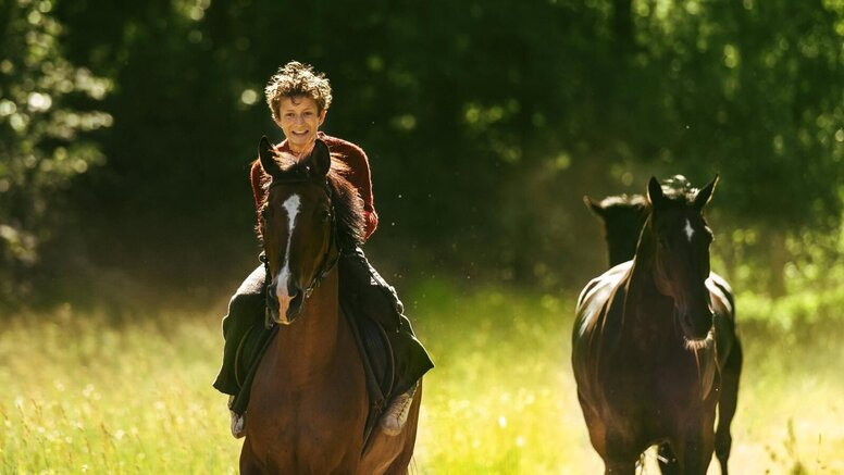 «Угоняя лошадей»: Рецензия Киноафиши