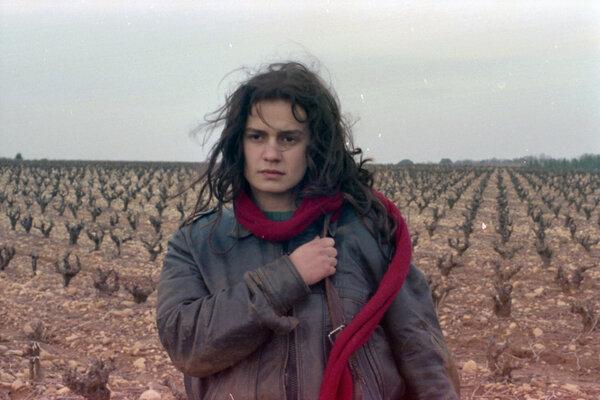 кадры и фото из фильма Без крыши, вне закона