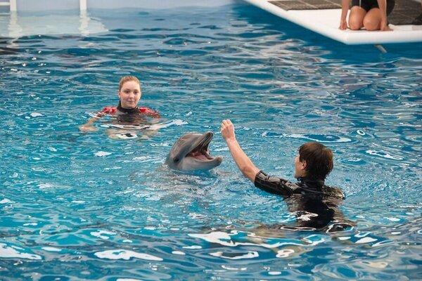 кадры и фото из фильма История дельфина 2