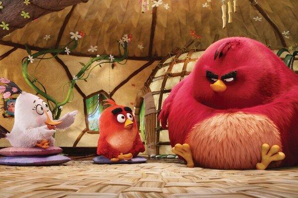 кадры и фото из фильма Angry Birds в кино