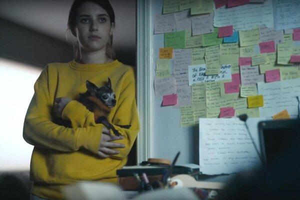 кадры и фото из фильма Пало-Альто
