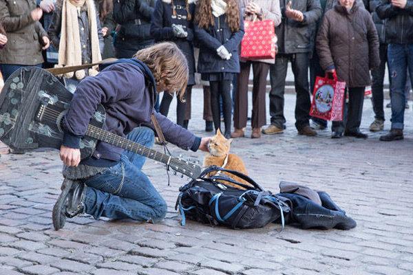 кадры и фото из фильма Уличный кот по кличке Боб