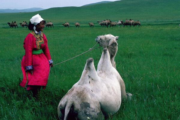 кадры и фото из фильма Монгольская Жанна д'Арк