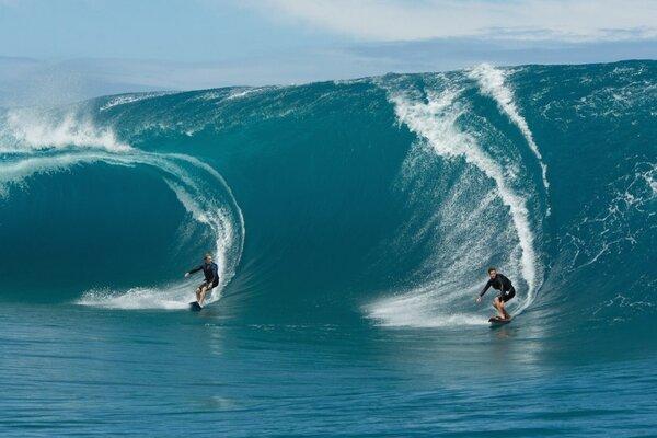 кадры и фото из фильма На гребне волны 3D